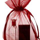 Grands sacs en Organza 20x28cm Bordeaux