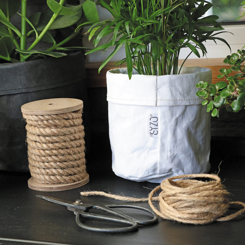 Paper-bag-White-decoration-plant-and-rope-
